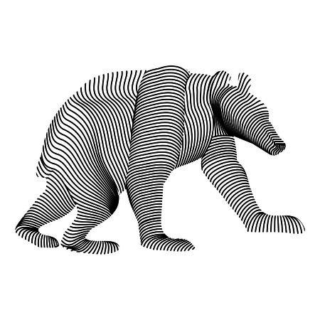 carcass: bear carcass