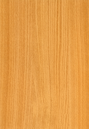 Close-up houten HQ (Beech Nevskij) textuur naar achtergrond Stockfoto