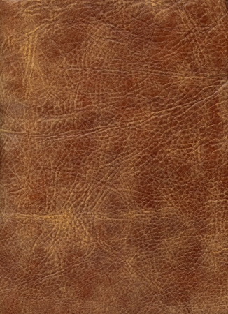 HQ Brown leather texture