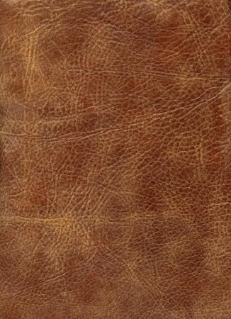 HQ Brown Leder Textur Standard-Bild - 2845990