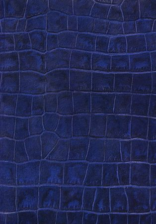 Blue reptile leather imitation texture Stock Photo