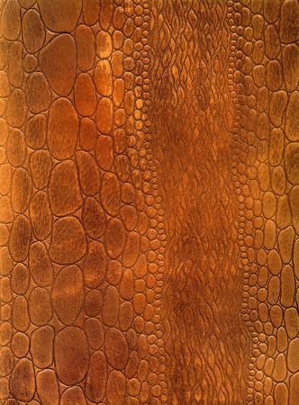 exoticism: Crocodile skin leather texture background