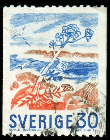 printed material: Vintage antique postage stamp