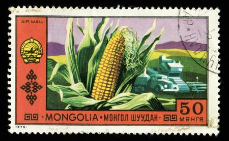 printed material: Vintage antique postage stamp from Mongolia  Stock Photo