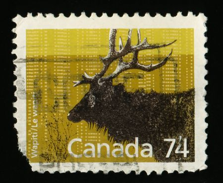 canada stamp: Vintage antique postage stamp from Canada