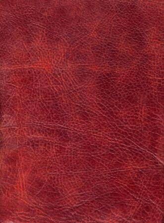 texture cuir marron: Brown cuir texture � backround