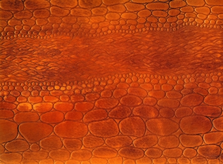 Close-up red natural reptile leather texture to background