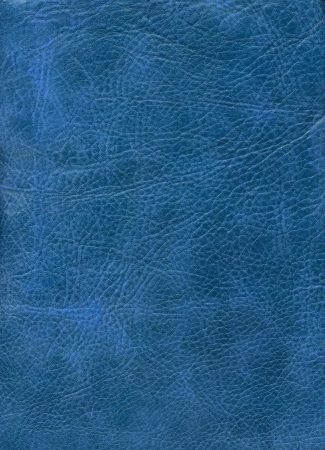 Close-up naturalnych skór tekstury na niebieskim tle