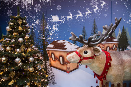 rein: Rein deer of Santa Claus
