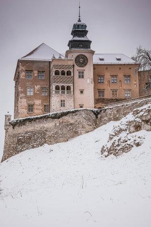skala: Pieskowa Skala Castle in Poland