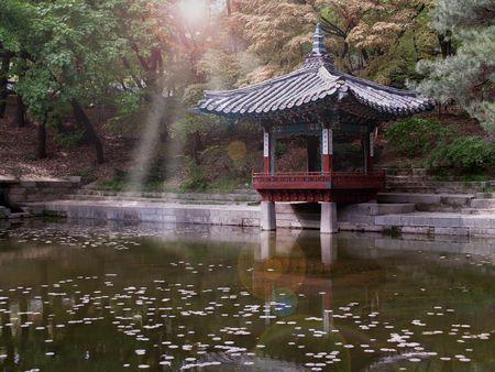 Pond  Lizenzfreie Bilder - 1171700