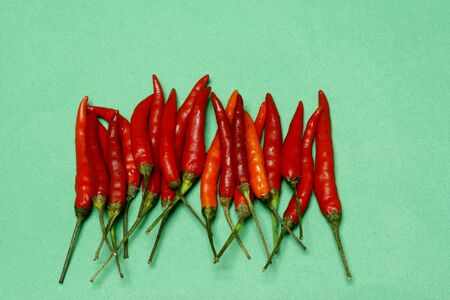 ragsac: Red Chilli  Stock Photo