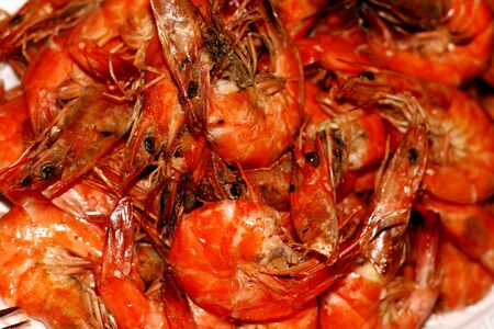 ragsac: Shrimps Stock Photo