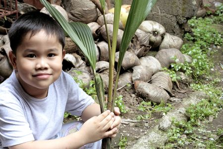 Child Holding a Coconut Seedling  photo