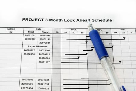 numerate: Time Schedule look ahead graph for a project