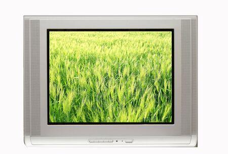 lanscape: TV with Spring Landscape