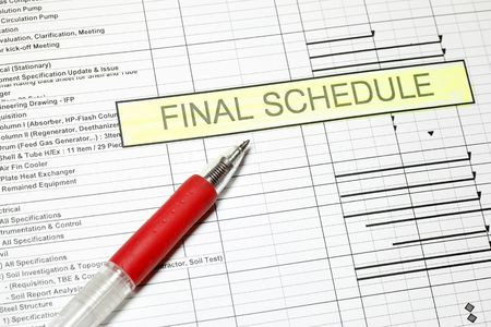numerate: Project Final Schedule