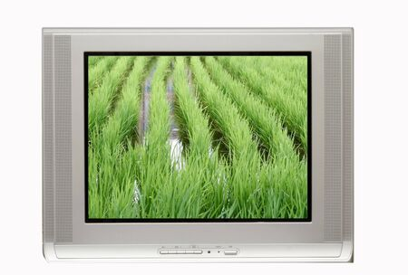 crt: TV ready for commercial use with rice paddy
