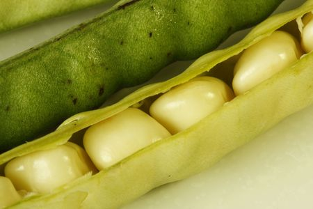 Close-up of ripe beans in its pod Stock Photo - 5514030