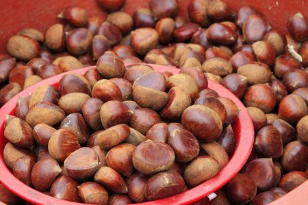buckeye seed: Chestnut being sold in the street of korea.