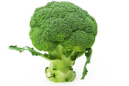 broccolli: fresh green broccoli isolated in white background