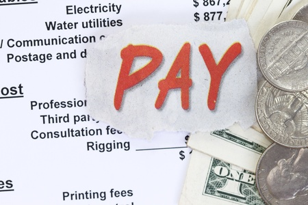 expenditure: Pay a balance sheet. Control of expenditure, revenue and profit