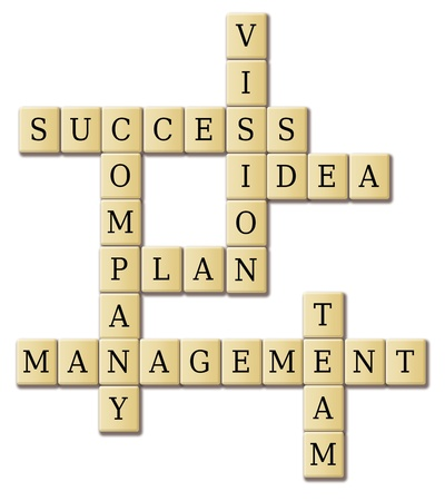 business words - success; plan; idea; company; vision; management; team  photo