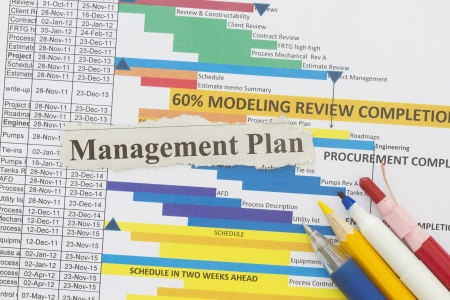 project manager: Management plan newspaper cutout in a document management plan