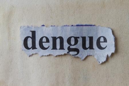 dengue: Macro immagine di una parola Dengue scritta sul giornale ritaglio Archivio Fotografico