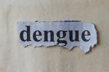 Macro picture of a Dengue word written on newspaper cutout  photo