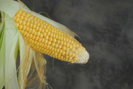Fresh corn on with rustic wall background, closeup