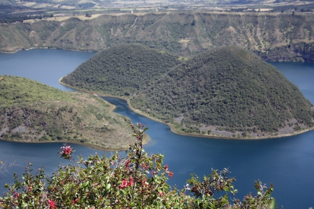 The two islands of Lake (lagoona) Cuicocha Ecuador formed in a volcanic crater near Cotacachi as seen through flowers on the shoreline.
