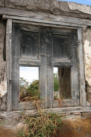 Broken window in a demolished house with plants growing in the window