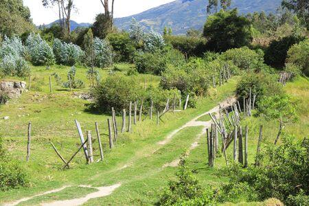 A dirt path running through a pasture on a farm in Cotacachi Ecuador Фото со стока
