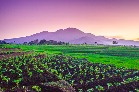 beauty morning with mountain range in sunrise time in north bengkulu indonesia