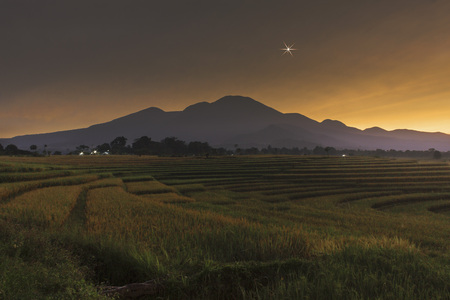 before sunrise at paddy fields, star before sunsrise at mountain range