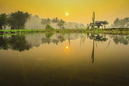 amazig reflection of water in the morning with amazing sunlight Stock Photo