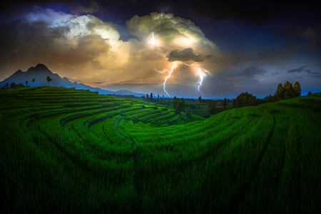 amazing moment at paddy fields with storm Stock Photo