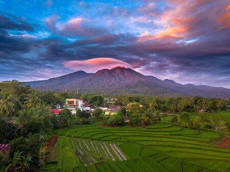 aerial photo beauty landscape paddy fields in north bengkulu, indonesia with amazing mountain range with blue sky