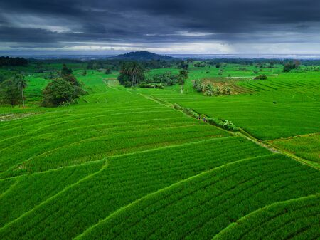 Indonesias natural beauty of Sumatra, where green rice fields with high mountains and beautiful blue clouds for a relaxing trip aerial landscape