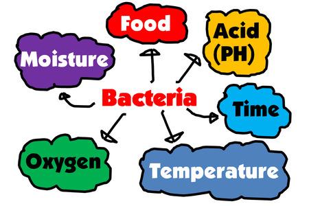 Factores que afectan a la proliferaci�n de bacterias photo