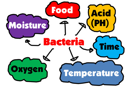 Factors affecting the proliferation of bacteria  photo