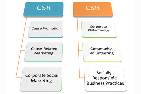 cause marketing: activity type of CRS picture style 3