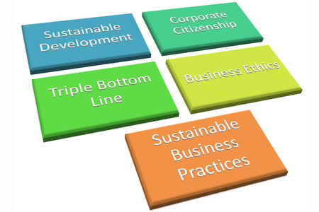business improvement: Picture style 3 of CSR also known as business improvement