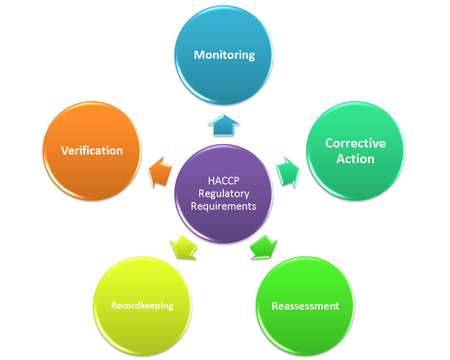 HACCP Regulatory Requirements style  Stock Photo