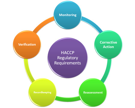 reassessment: HACCP Regulatory Requirements style 1 Stock Photo