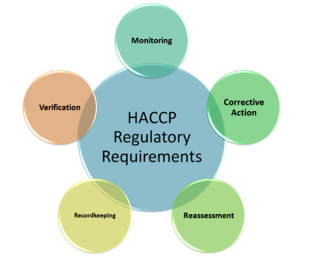 reassessment: HACCP Regulatory Requirements style  Stock Photo