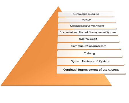 prerequisite: Elements of an effective Food Safety Management System  style