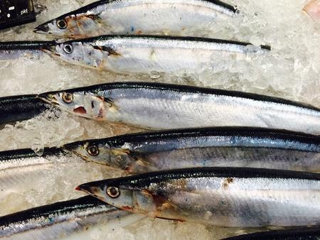 frozen food: Fish frozen food in super market place