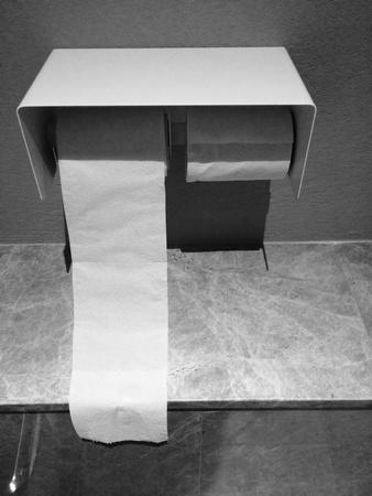 tissue paper: Tissue paper roll in toilet